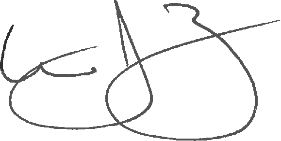 Bill Zottoli signature